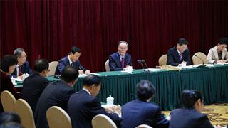 王岐山参加湖南代表团讨论