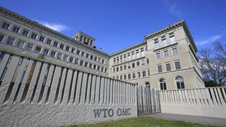 WTO对华审议结果出炉