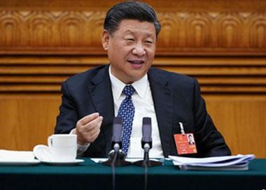 习近平参加湖北代表团审议发表重要讲话