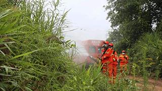 云南计划控制竹蝗成虫迁入