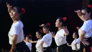 中小学舞蹈教师培优计划